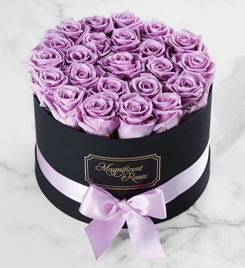 Magnificent Roses Preserved Lavender Roses