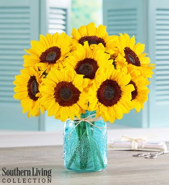 Sunflowers by Southern Living
